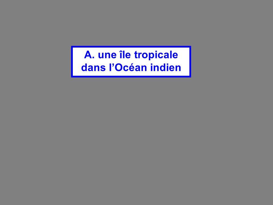 A. une île tropicale dans l'Océan indien