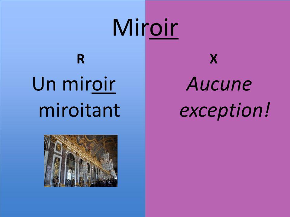 Le genre des noms en fran ais les terminaisons r guli res for Un lointain miroir
