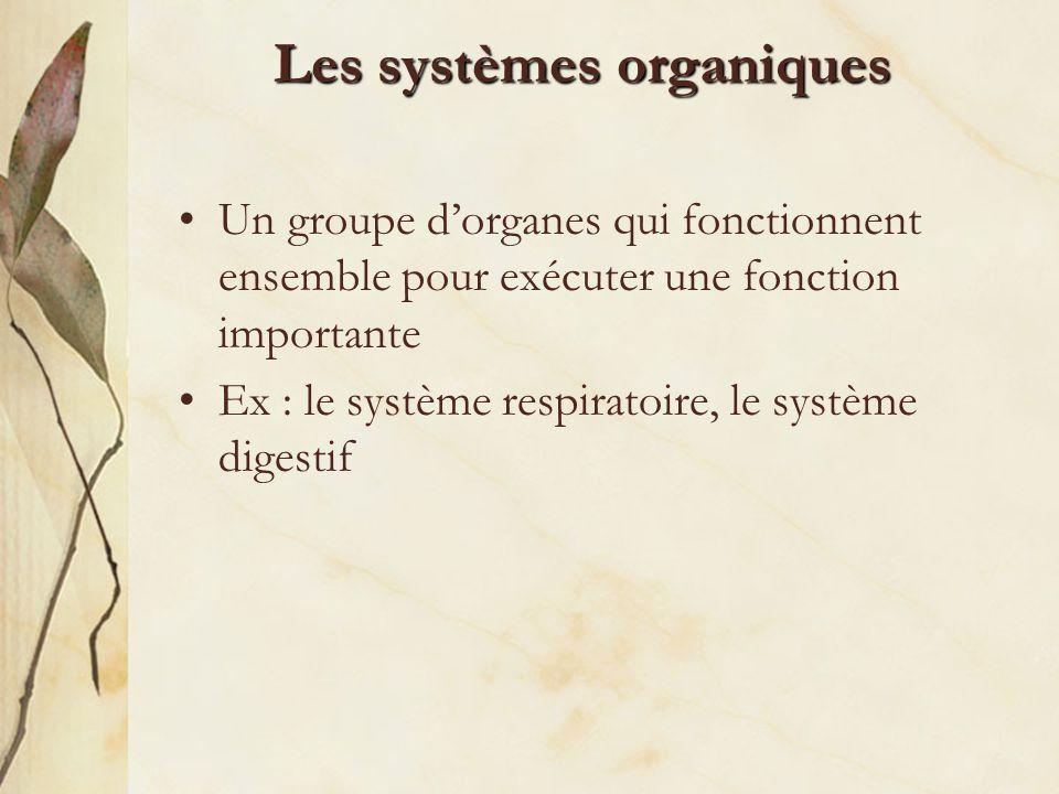 Les systèmes organiques