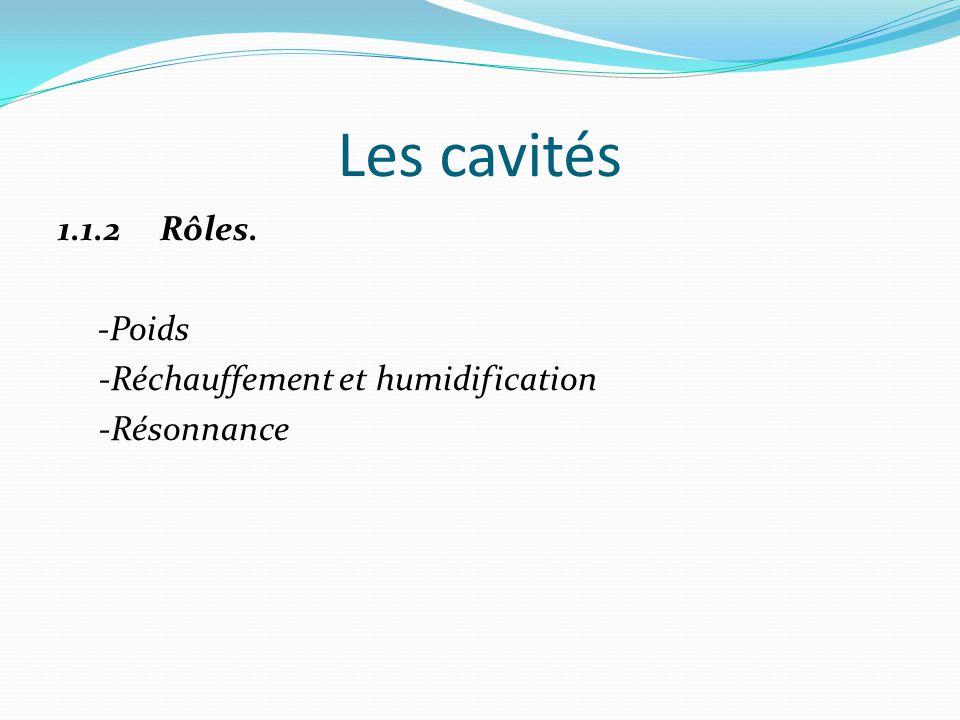 Les cavités 1.1.2 Rôles. -Poids -Réchauffement et humidification -Résonnance
