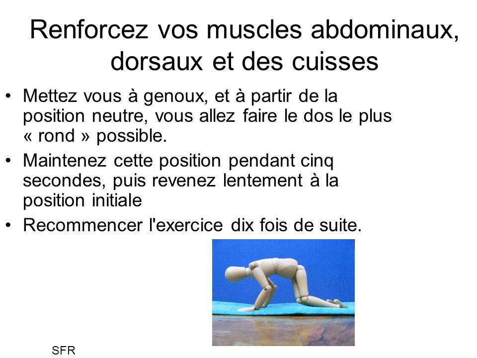 Renforcez vos muscles abdominaux, dorsaux et des cuisses