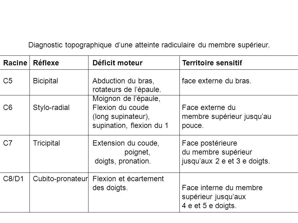 Diagnostic topographique d'une atteinte radiculaire du membre supérieur.