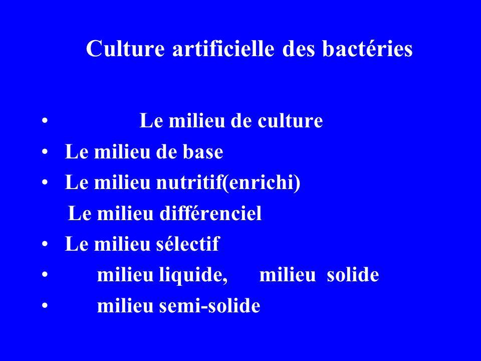 Culture artificielle des bactéries