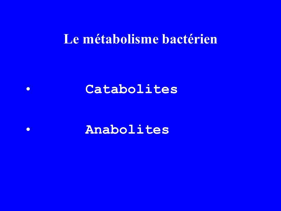 Le métabolisme bactérien