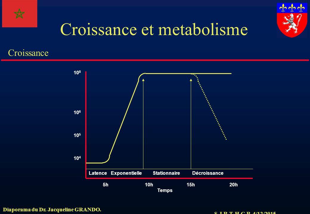 Croissance et metabolisme