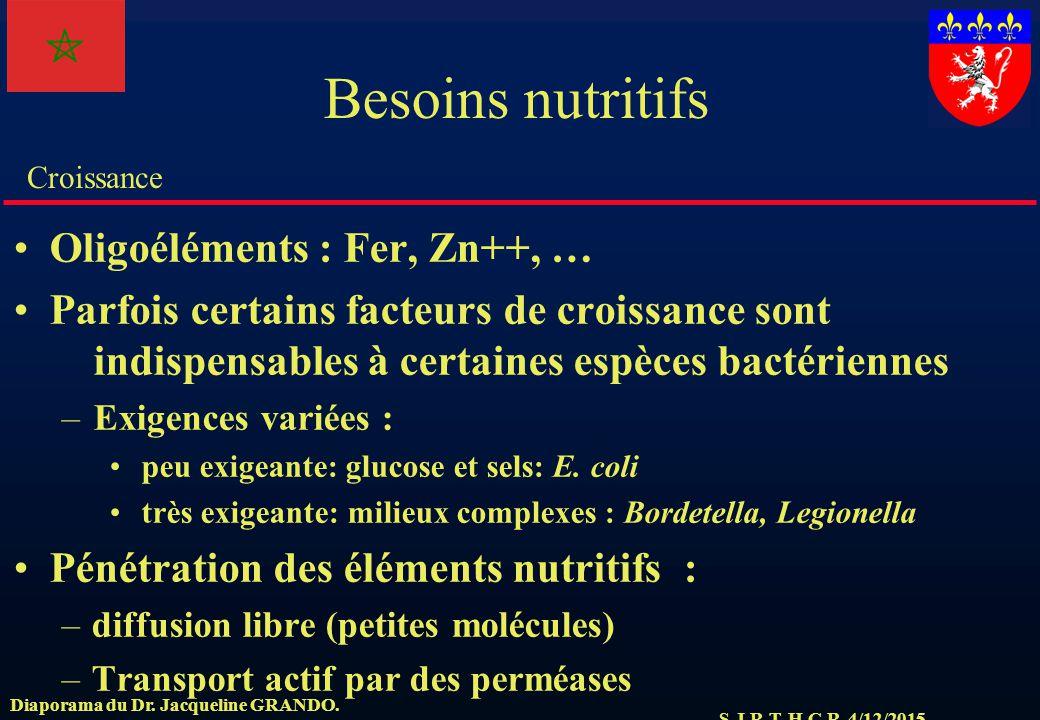 Besoins nutritifs Oligoéléments : Fer, Zn++, …