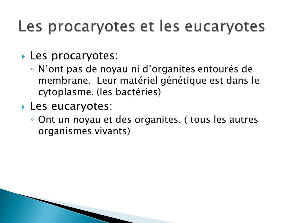 Les procaryotes et les eucaryotes