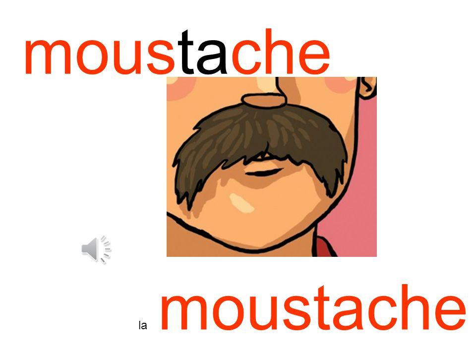 moustache la moustache