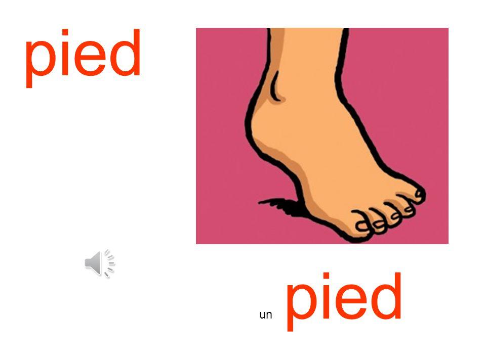 pied un pied