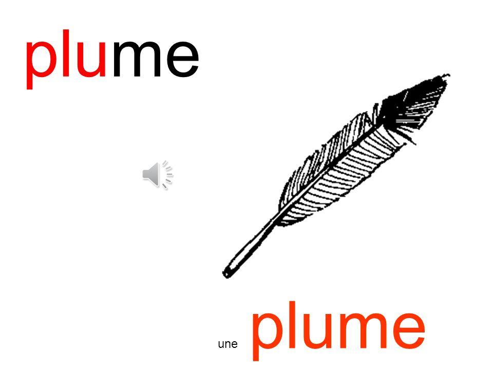 plume une plume