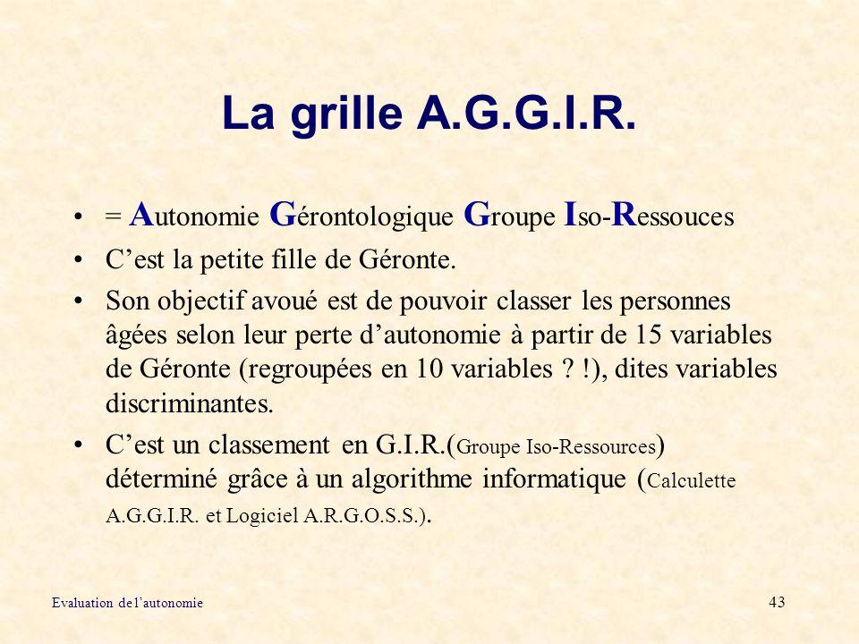 La grille A.G.G.I.R. = Autonomie Gérontologique Groupe Iso-Ressouces