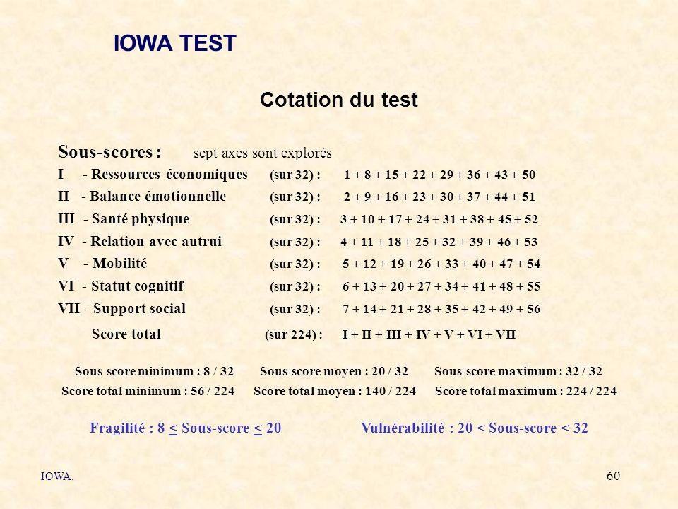 IOWA TEST Cotation du test Sous-scores : sept axes sont explorés