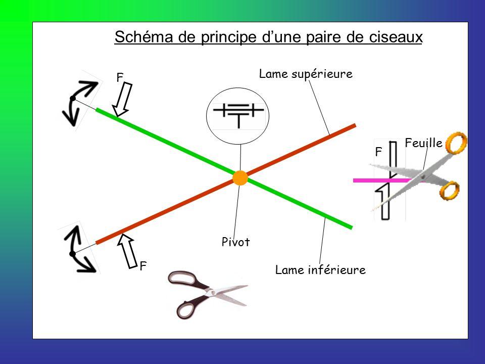 Formation r gionale en science et technologie ppt t l charger - Un ciseau ou des ciseaux ...