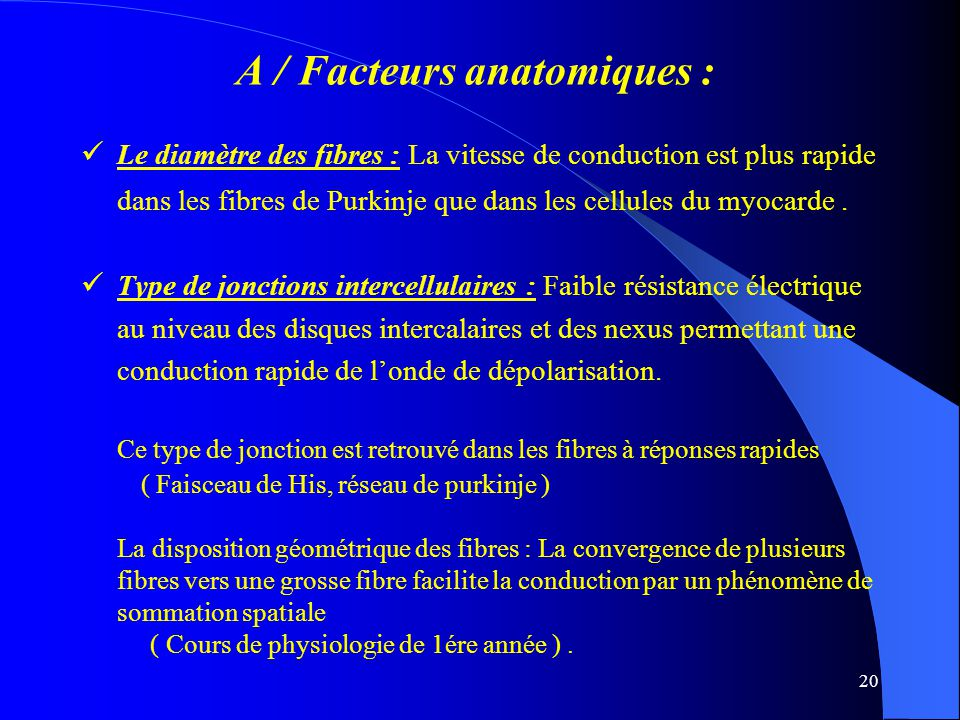 A / Facteurs anatomiques :