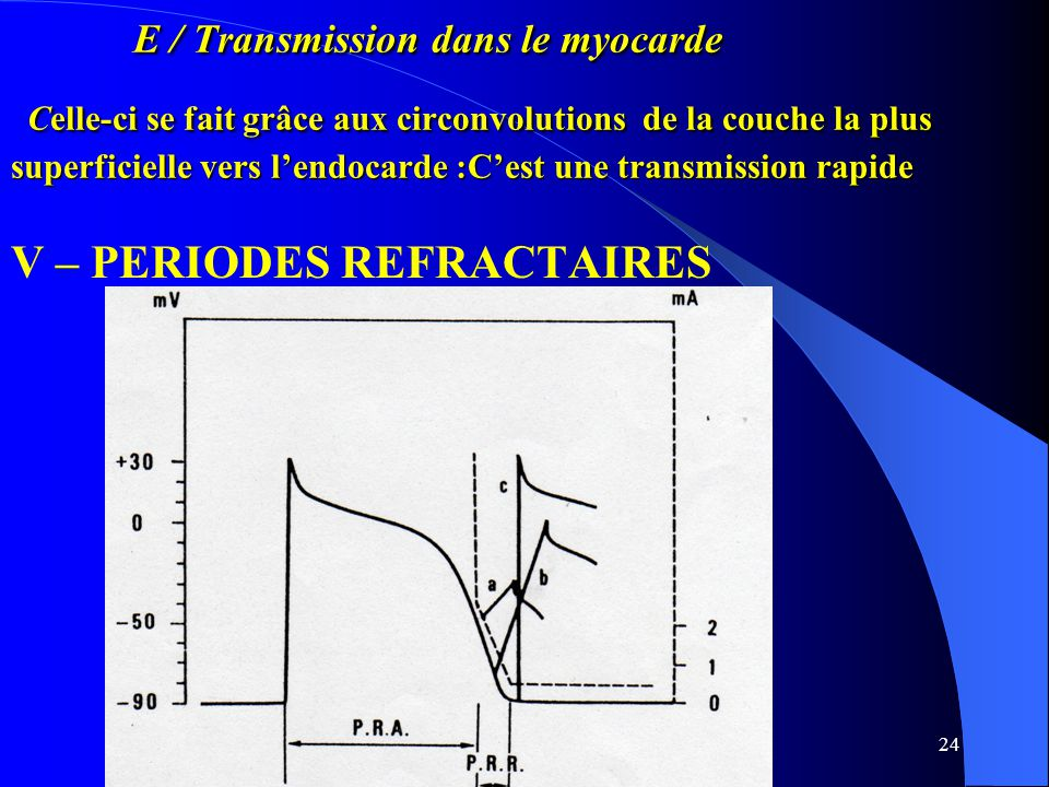 V – PERIODES REFRACTAIRES