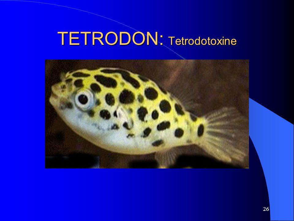 TETRODON: Tetrodotoxine