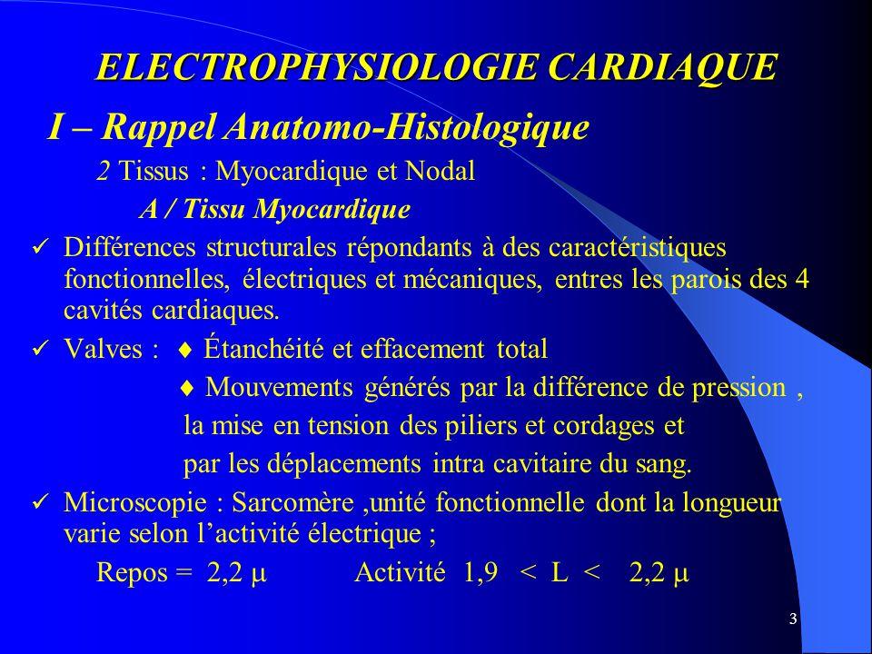 ELECTROPHYSIOLOGIE CARDIAQUE