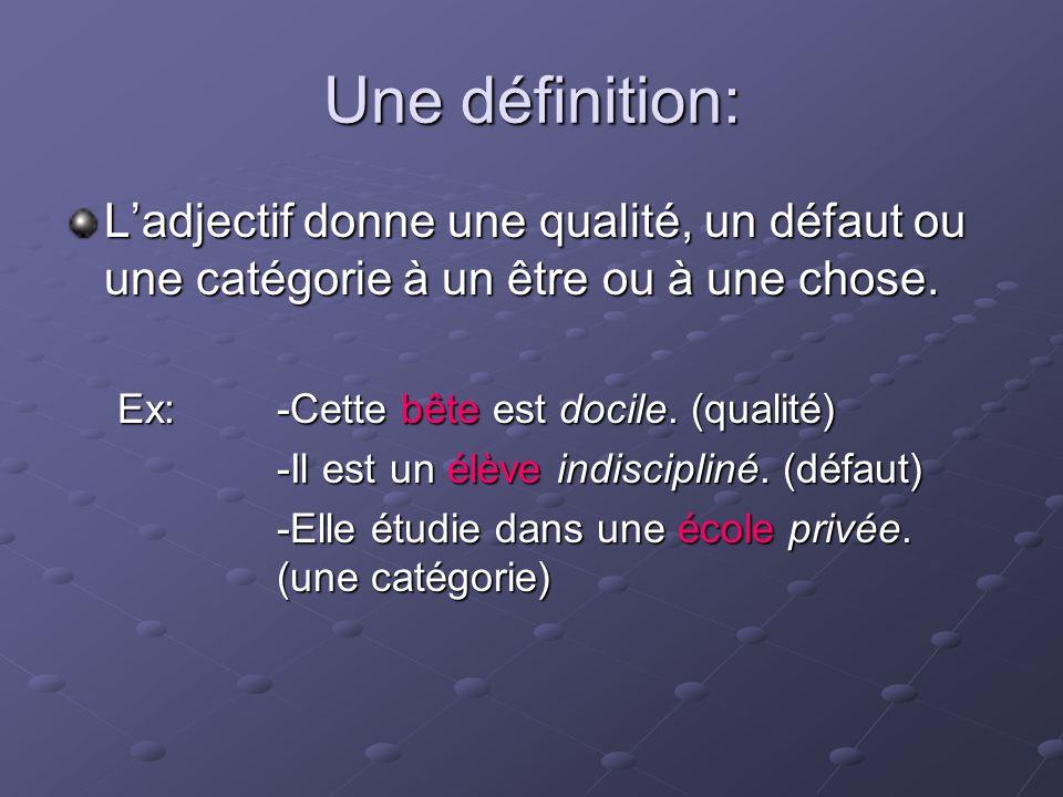 objectif adjectif definition