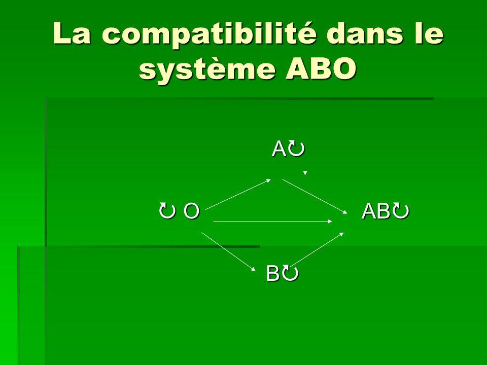 La compatibilité dans le système ABO
