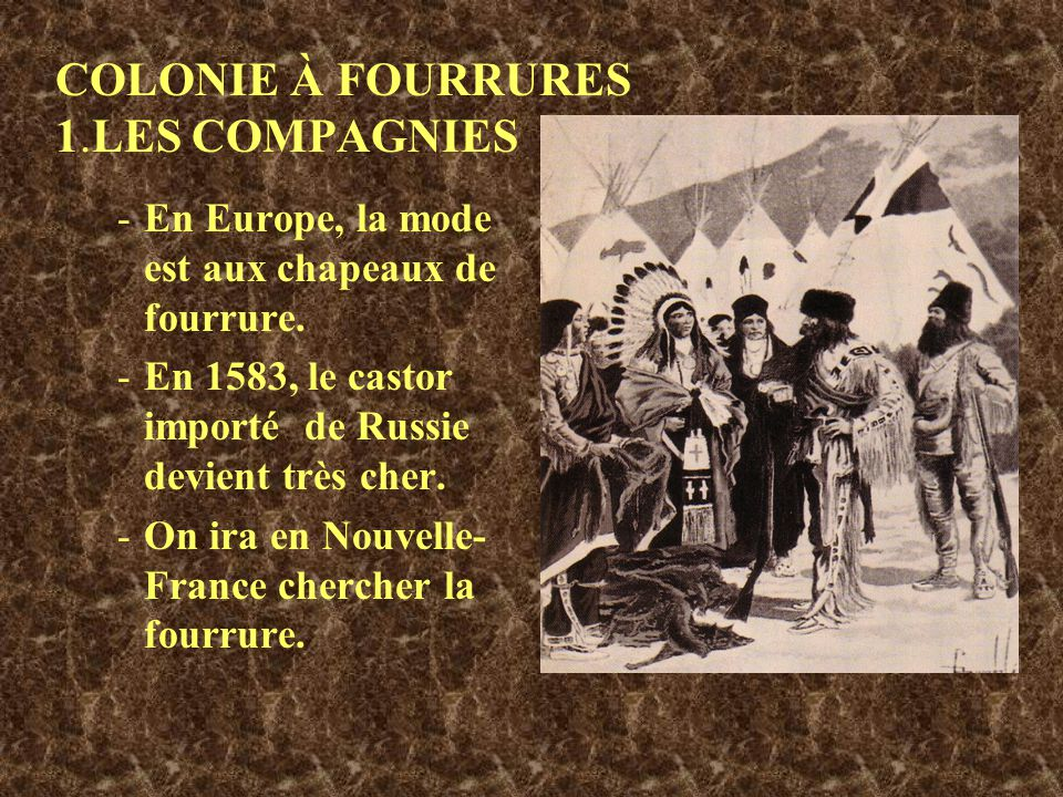 COLONIE À FOURRURES 1.LES COMPAGNIES