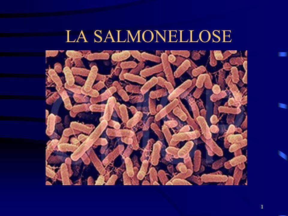 la salmonellose