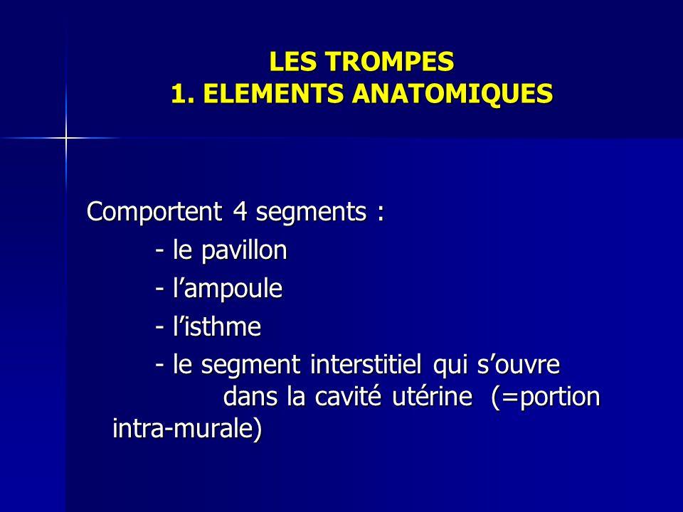LES TROMPES 1. ELEMENTS ANATOMIQUES