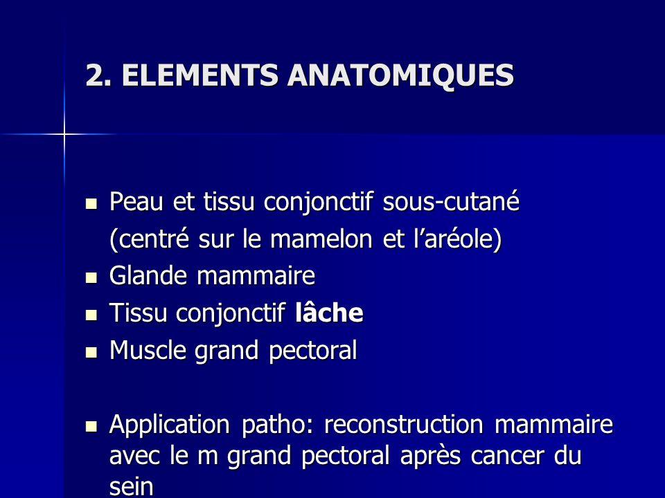 2. ELEMENTS ANATOMIQUES Peau et tissu conjonctif sous-cutané