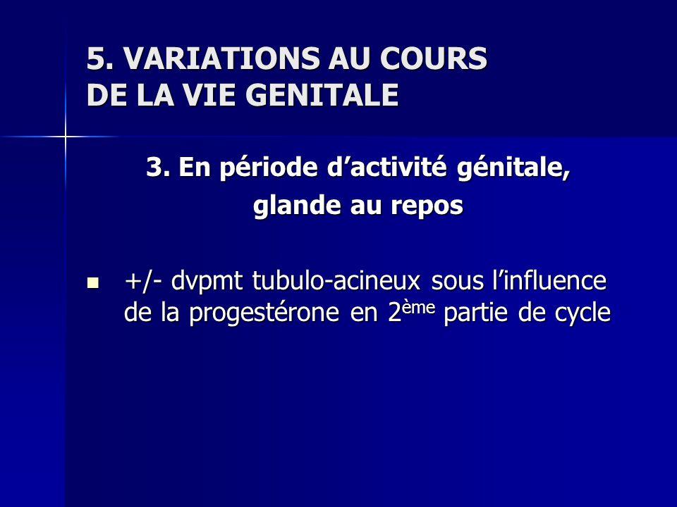 5. VARIATIONS AU COURS DE LA VIE GENITALE