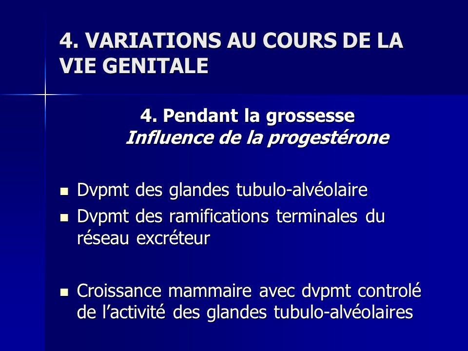4. VARIATIONS AU COURS DE LA VIE GENITALE