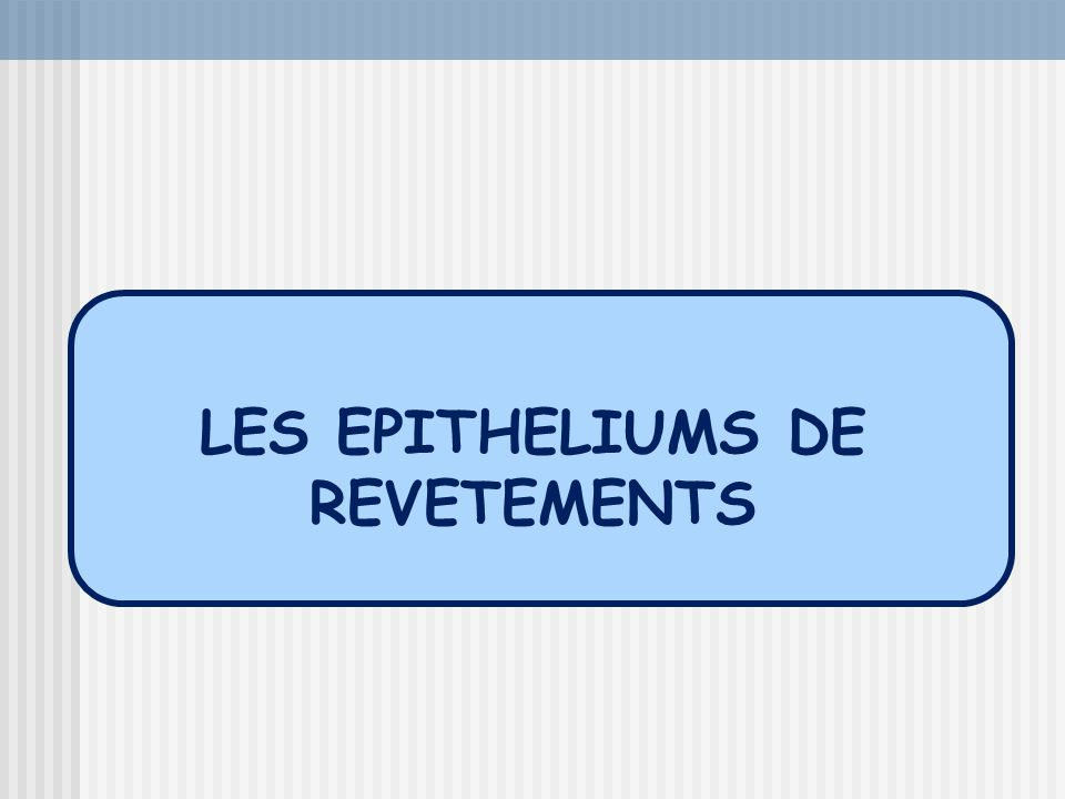 LES EPITHELIUMS DE REVETEMENTS