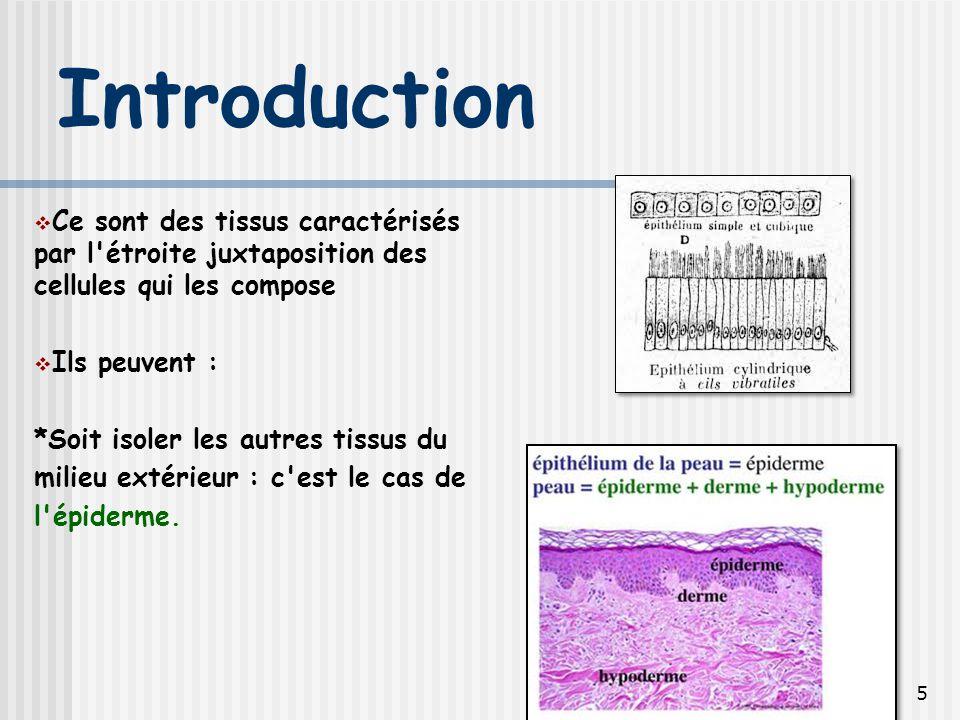 Introduction Ce sont des tissus caractérisés par l étroite juxtaposition des cellules qui les compose.