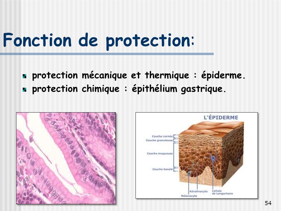 Fonction de protection: