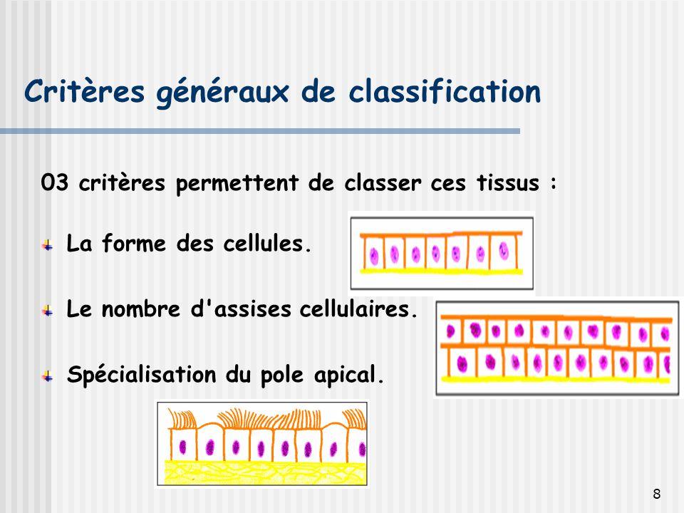 Critères généraux de classification