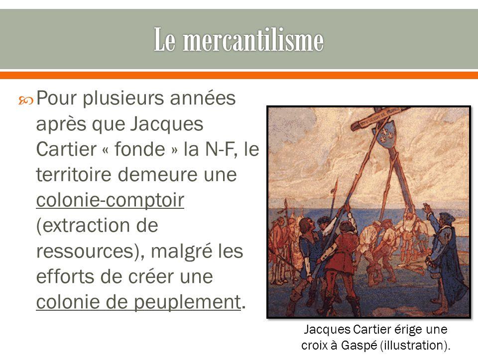 Jacques Cartier érige une croix à Gaspé (illustration).