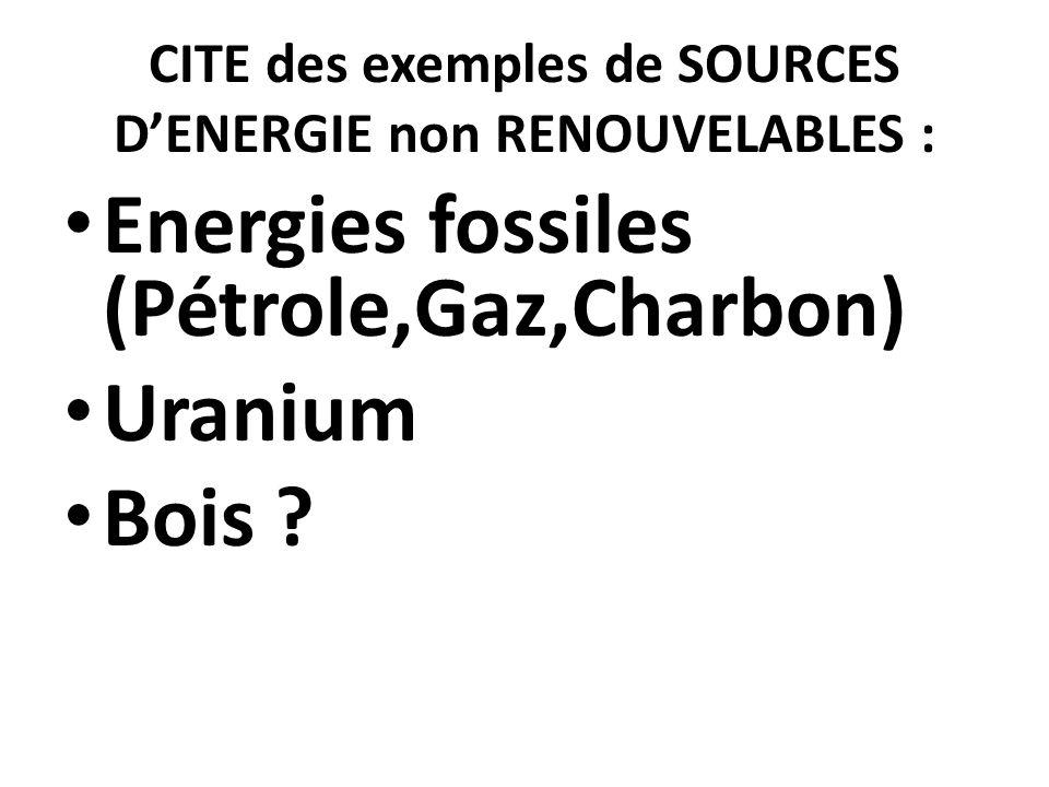 CITE des exemples de SOURCES D'ENERGIE non RENOUVELABLES :