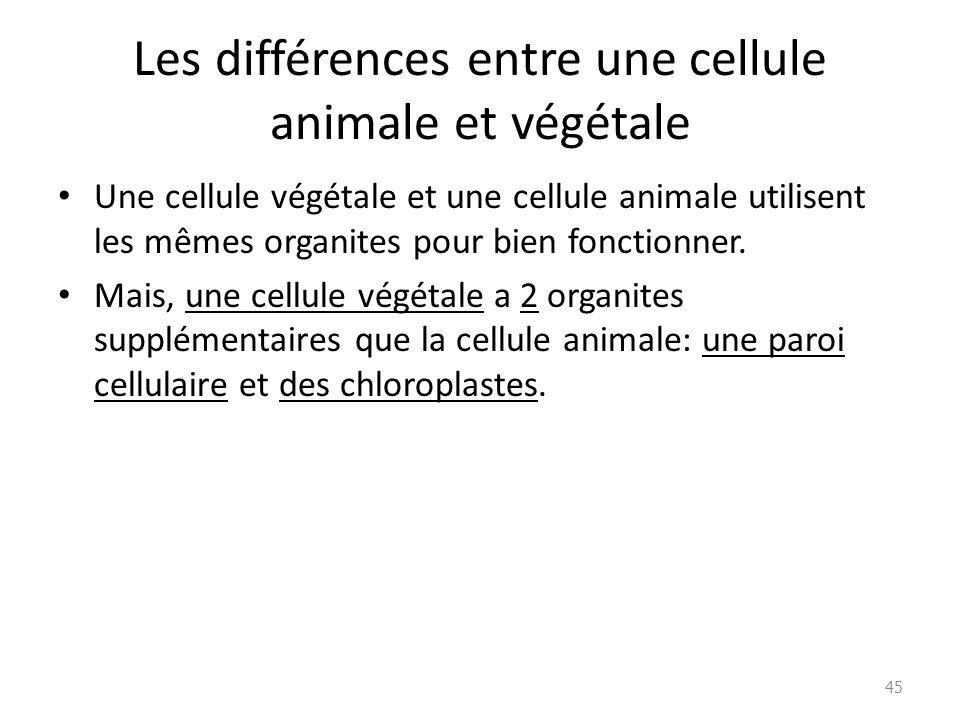 Des cellules aux syst mes organiques ppt t l charger - Difference entre les cookeo ...