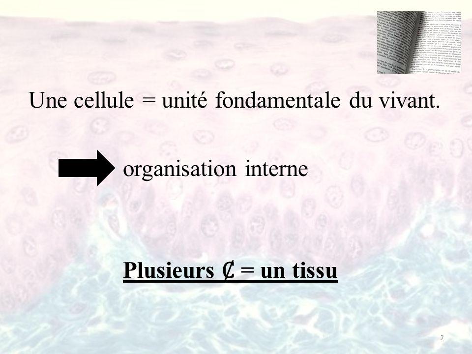 Une cellule = unité fondamentale du vivant