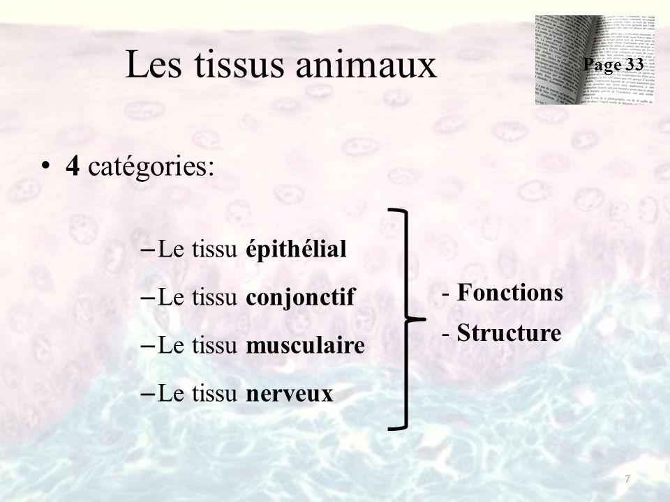 Les tissus animaux 4 catégories: Le tissu épithélial