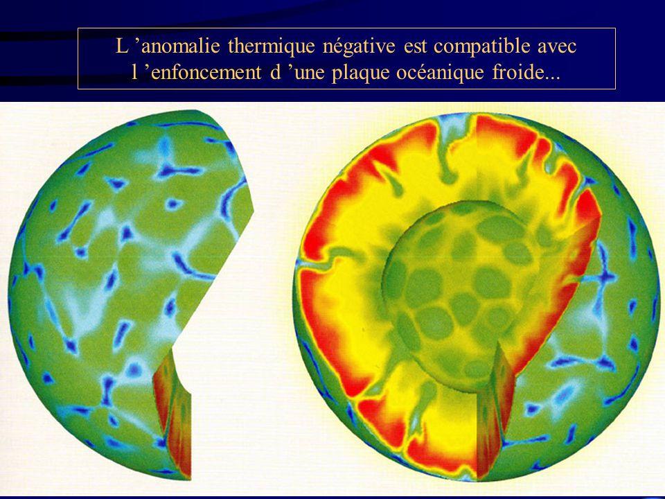 L 'anomalie thermique négative est compatible avec l 'enfoncement d 'une plaque océanique froide...