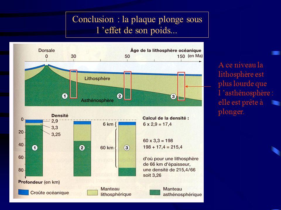 Conclusion : la plaque plonge sous l 'effet de son poids...
