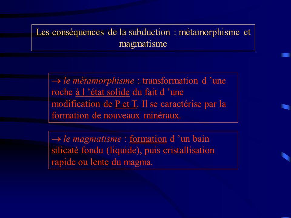 Les conséquences de la subduction : métamorphisme et magmatisme