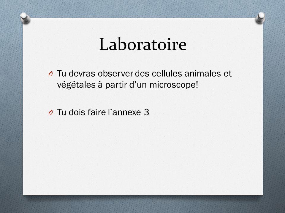 Laboratoire Tu devras observer des cellules animales et végétales à partir d'un microscope.