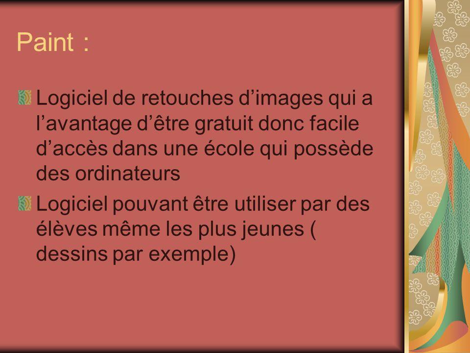 Paint : Logiciel de retouches d'images qui a l'avantage d'être gratuit donc facile d'accès dans une école qui possède des ordinateurs.