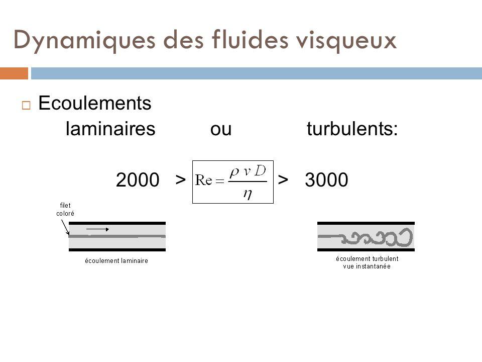 Dynamiques des fluides visqueux