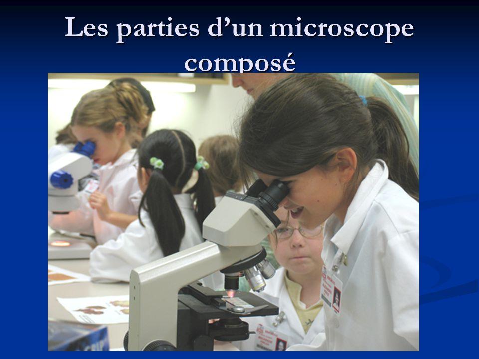 Les parties d'un microscope composé