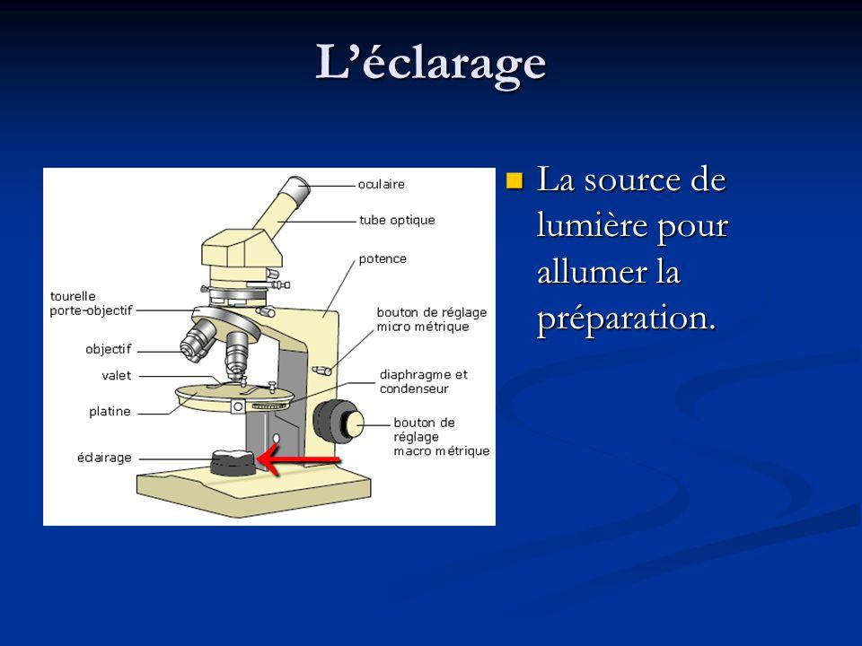 L'éclarage La source de lumière pour allumer la préparation. ←