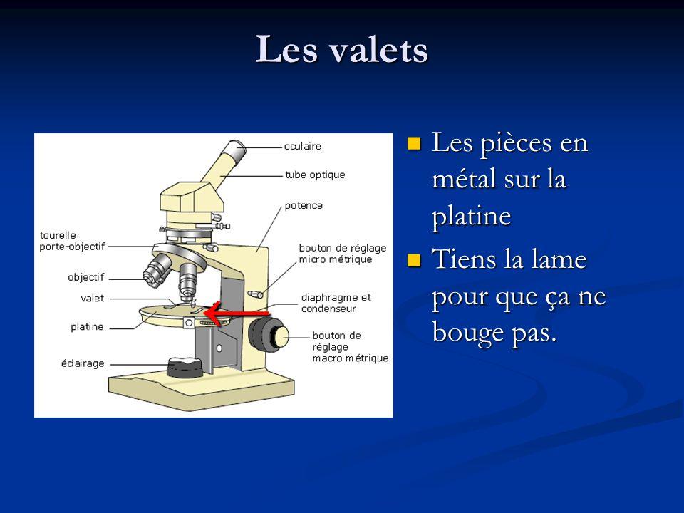 ← Les valets Les pièces en métal sur la platine