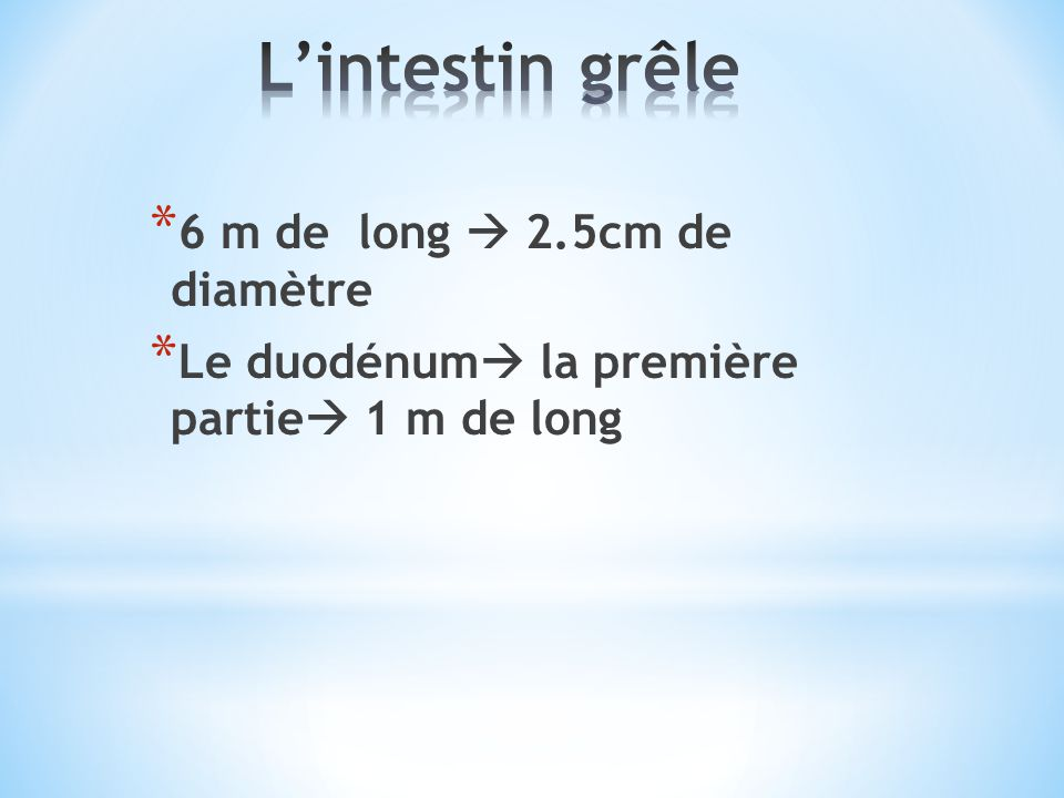 L'intestin grêle 6 m de long  2.5cm de diamètre