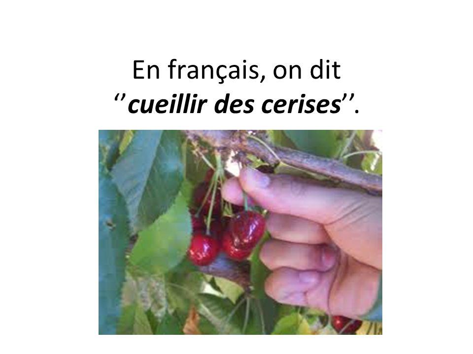 Les comptines ppt t l charger - Comment cueillir des fraises ...