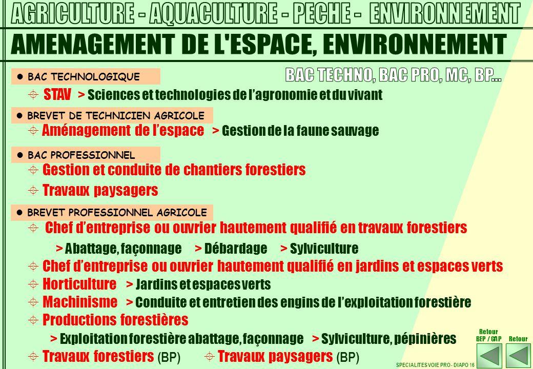 Sp cialit s et les dipl mes ppt t l charger for Ouvrier entretien espaces verts